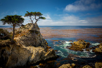 Lone Cypress-Pebble Beach